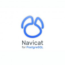 Navicat for PostgreSQL v12 LINUX ENTERPRISE ESD 1-4 User License