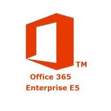 Microsoft 365 Enterprise Plan E5 Subscription