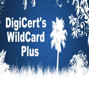 Digicert Wildcard Plus - SSL Certificates for Unlimited Servers and Subdomains