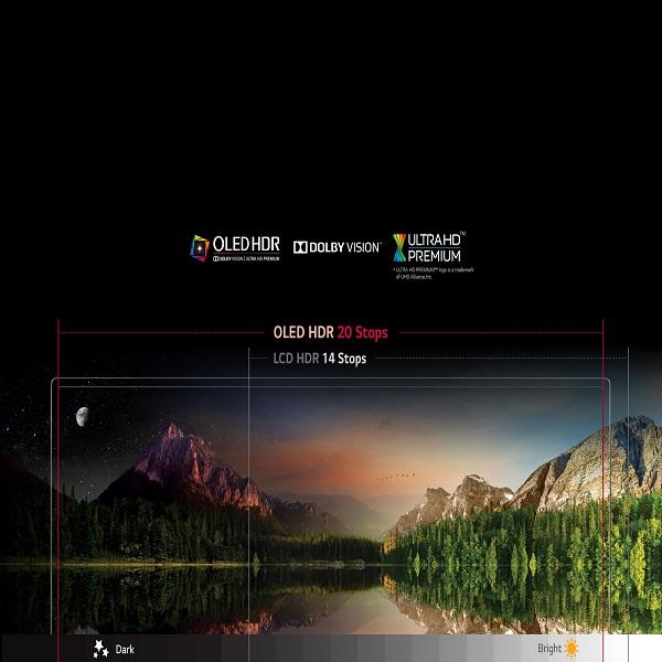 LG 55-inch Blade Slim OLED HDR TV - OLED55B6V.AMA