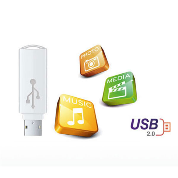 LG DP132H Turn on USB 2.0
