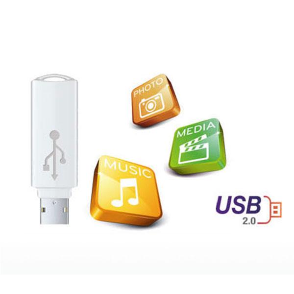 LG DP132H Turn on USB 2.0